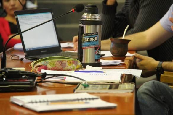 9no Plenario Juventud Guevarista panel